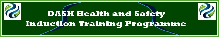 DASH Health and Safety Induction Training Programme